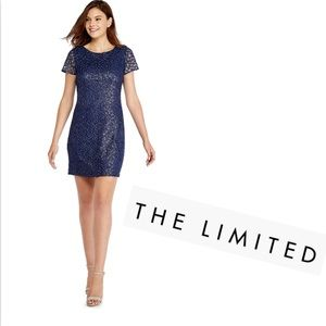 The Limited Dresses - Blue Dress THE LIMITED Embroidered w Silver NWT